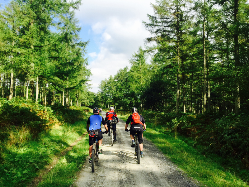 Ludlow Cycling Festival – Fantastic Forest MTB